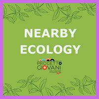 Nearby Ecology - Corso di formazione Erasmus+
